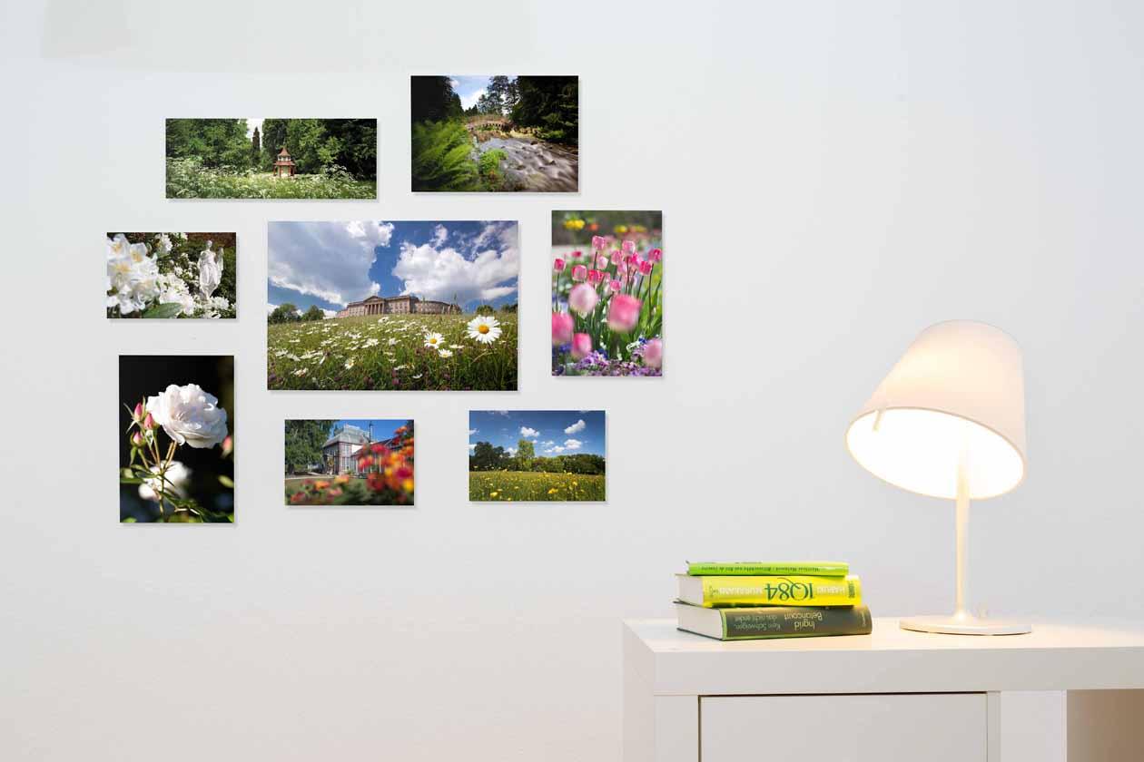 meyer_fotosalon_galerie_print-3655-c-publish