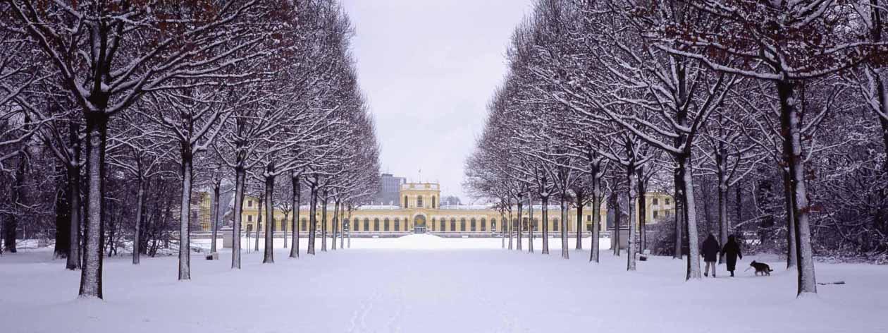 Hier ist die Orangerie in Kassel zu sehen. Foto: Heiko Meyer